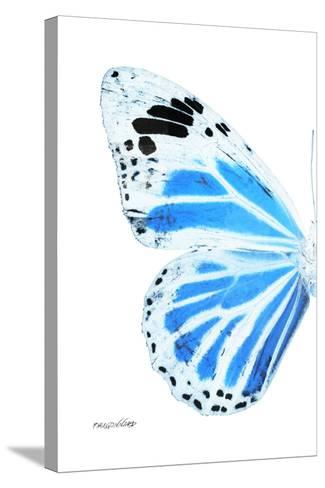 Miss Butterfly Genutia - X-Ray Left White Edition-Philippe Hugonnard-Stretched Canvas Print