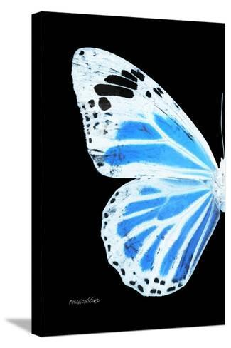 Miss Butterfly Genutia - X-Ray Left Black Edition-Philippe Hugonnard-Stretched Canvas Print