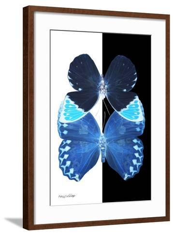 Miss Butterfly Duo Heboformo II - X-Ray B&W Edition-Philippe Hugonnard-Framed Art Print
