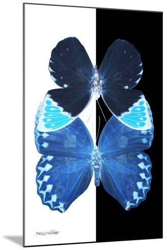 Miss Butterfly Duo Heboformo II - X-Ray B&W Edition-Philippe Hugonnard-Mounted Photographic Print