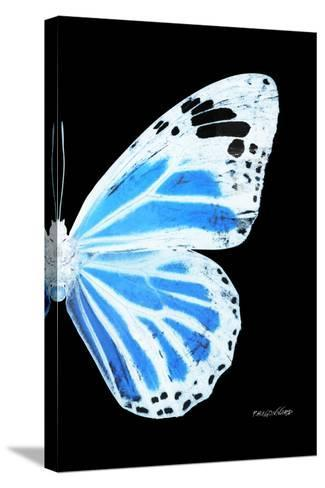 Miss Butterfly Genutia - X-Ray Right Black Edition-Philippe Hugonnard-Stretched Canvas Print