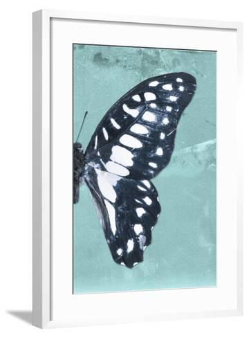 Miss Butterfly Graphium Profil - Turquoise-Philippe Hugonnard-Framed Art Print