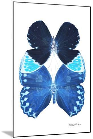 Miss Butterfly Duo Heboformo II - X-Ray White Edition-Philippe Hugonnard-Mounted Photographic Print