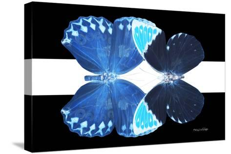 Miss Butterfly Duo Heboformo - X-Ray B&W Edition II-Philippe Hugonnard-Stretched Canvas Print