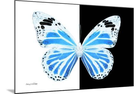 Miss Butterfly Genutia - X-Ray B&W Edition-Philippe Hugonnard-Mounted Photographic Print