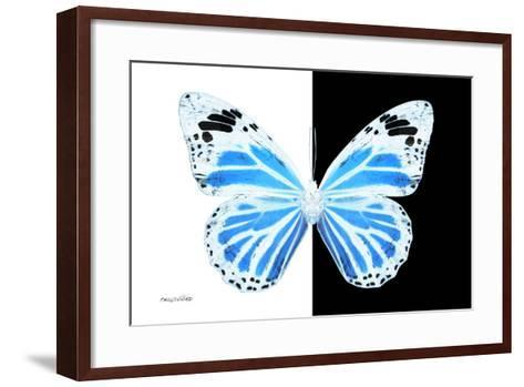 Miss Butterfly Genutia - X-Ray B&W Edition-Philippe Hugonnard-Framed Art Print