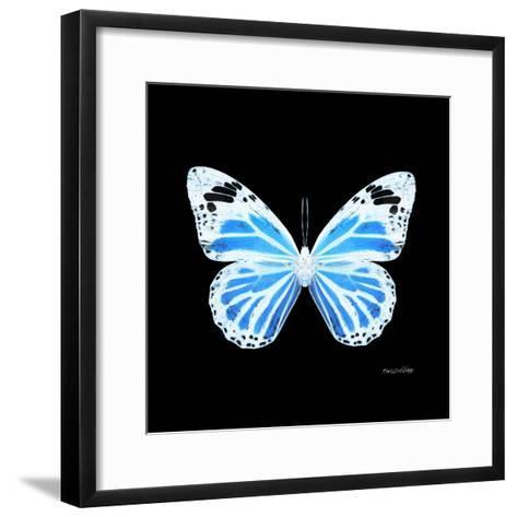Miss Butterfly Genutia Sq - X-Ray Black Edition-Philippe Hugonnard-Framed Art Print