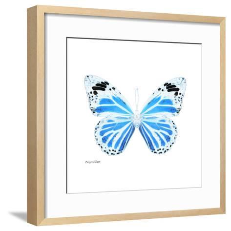 Miss Butterfly Genutia Sq - X-Ray White Edition-Philippe Hugonnard-Framed Art Print