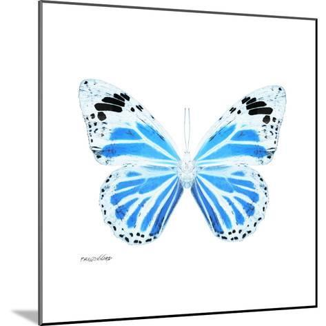 Miss Butterfly Genutia Sq - X-Ray White Edition-Philippe Hugonnard-Mounted Photographic Print