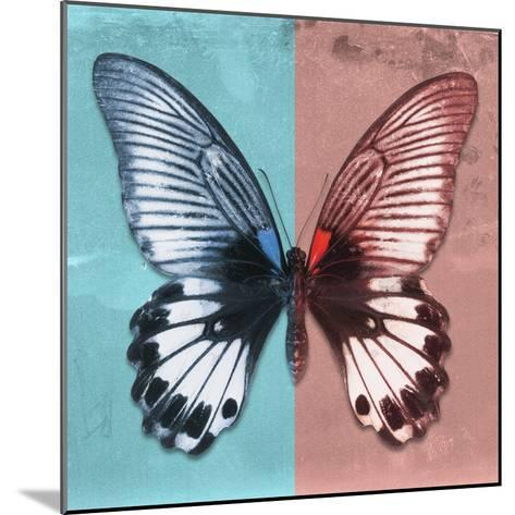 Miss Butterfly Agenor Sq - Turquoise & Red-Philippe Hugonnard-Mounted Photographic Print