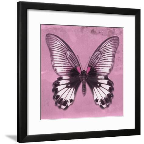 Miss Butterfly Agenor Sq - Pale Violet-Philippe Hugonnard-Framed Art Print