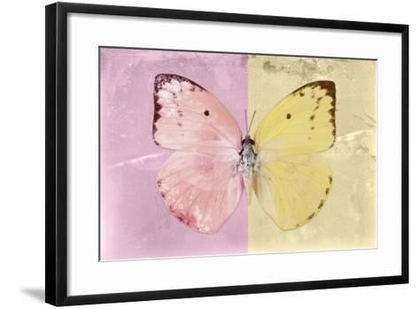 Miss Butterfly Catopsilia - Pale Violet & Gold-Philippe Hugonnard-Framed Art Print