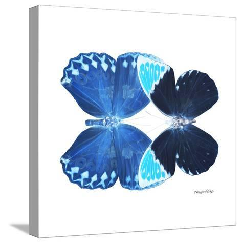 Miss Butterfly Duo Heboformo Sq - X-Ray White Edition-Philippe Hugonnard-Stretched Canvas Print