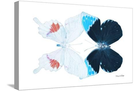 Miss Butterfly Duo Hermosana - X-Ray White Edition-Philippe Hugonnard-Stretched Canvas Print