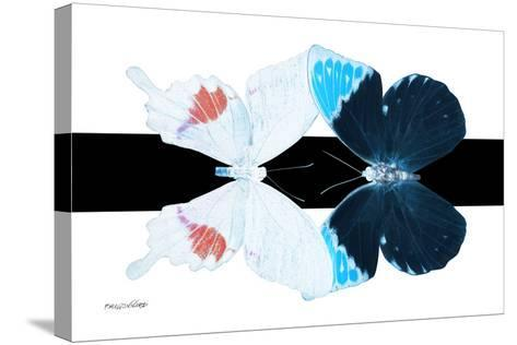 Miss Butterfly Duo Hermosana - X-Ray B&W Edition-Philippe Hugonnard-Stretched Canvas Print