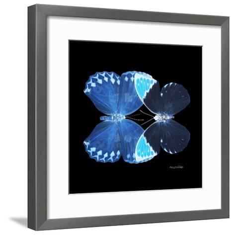 Miss Butterfly Duo Heboformo Sq - X-Ray Black Edition-Philippe Hugonnard-Framed Art Print
