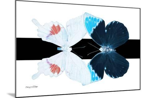 Miss Butterfly Duo Hermosana - X-Ray B&W Edition-Philippe Hugonnard-Mounted Photographic Print