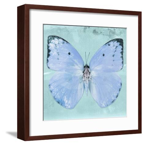 Miss Butterfly Catopsilia Sq - Turquoise-Philippe Hugonnard-Framed Art Print