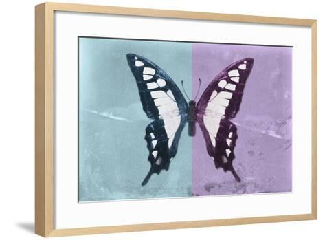 Miss Butterfly Cloanthus - Turquoise & Mauve-Philippe Hugonnard-Framed Art Print