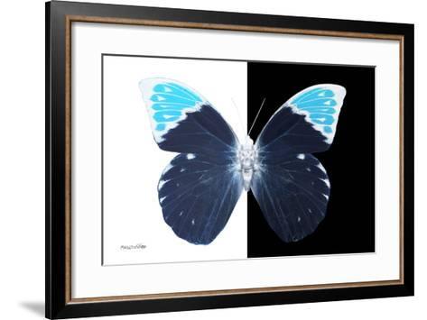 Miss Butterfly Hebomoia - X-Ray B&W Edition-Philippe Hugonnard-Framed Art Print