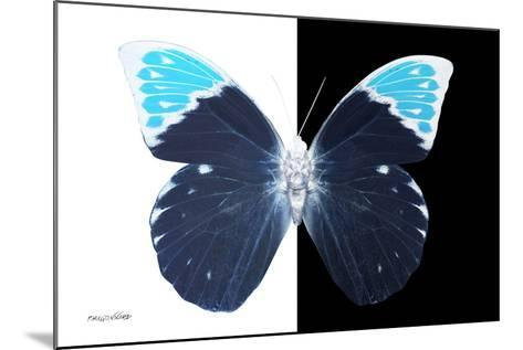 Miss Butterfly Hebomoia - X-Ray B&W Edition-Philippe Hugonnard-Mounted Photographic Print