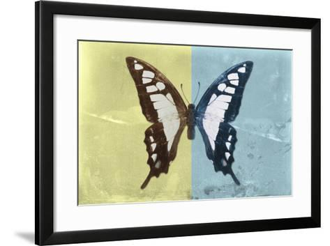 Miss Butterfly Cloanthus - Yellow & Turquoise-Philippe Hugonnard-Framed Art Print