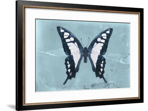 Miss Butterfly Cloanthus - Turquoise-Philippe Hugonnard-Framed Art Print