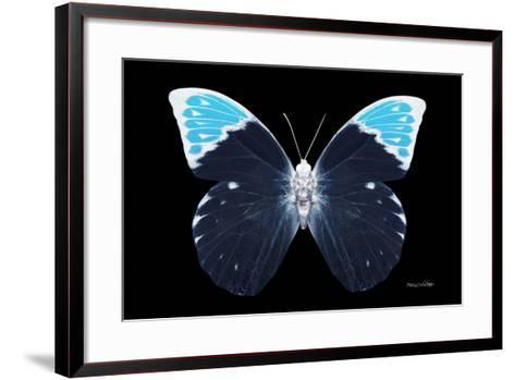 Miss Butterfly Hebomoia - X-Ray Black Edition-Philippe Hugonnard-Framed Art Print