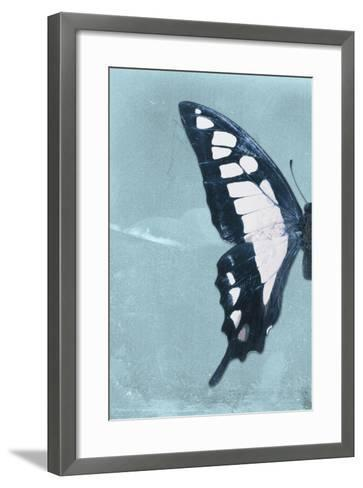 Miss Butterfly Cloanthus Profil - Turquoise-Philippe Hugonnard-Framed Art Print