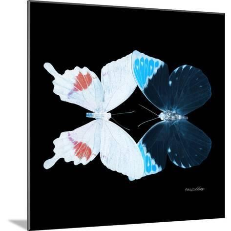 Miss Butterfly Duo Hermosana Sq - X-Ray Black Edition-Philippe Hugonnard-Mounted Photographic Print