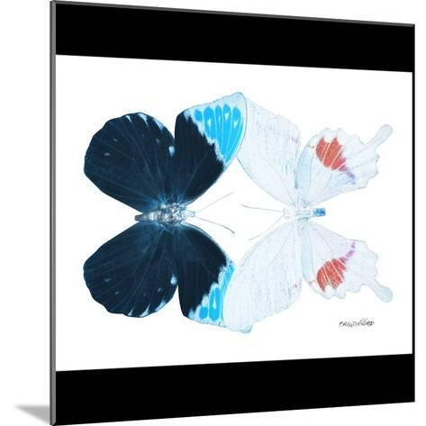 Miss Butterfly Duo Hermosana Sq - X-Ray B&W Edition-Philippe Hugonnard-Mounted Photographic Print