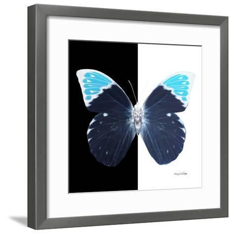 Miss Butterfly Hebomoia Sq - X-Ray B&W Edition-Philippe Hugonnard-Framed Art Print