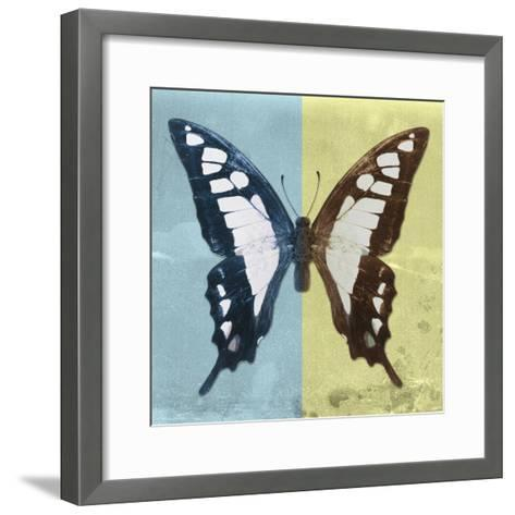 Miss Butterfly Cloanthus Sq - Turquoise & Yellow-Philippe Hugonnard-Framed Art Print