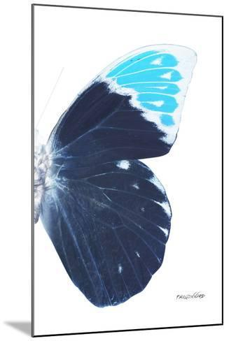 Miss Butterfly Hebomoia - X-Ray Right White Edition-Philippe Hugonnard-Mounted Photographic Print
