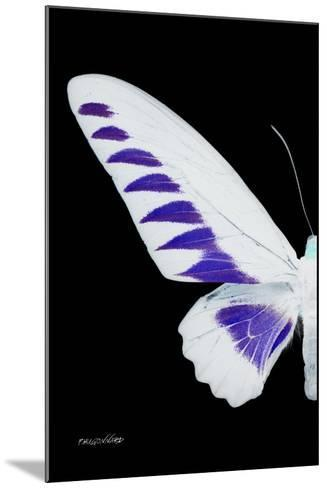 Miss Butterfly Brookiana - X-Ray Left Black Edition-Philippe Hugonnard-Mounted Photographic Print