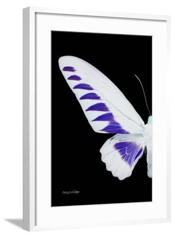 Miss Butterfly Brookiana - X-Ray Left Black Edition-Philippe Hugonnard-Framed Art Print