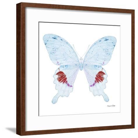 Miss Butterfly Hermosanus Sq - X-Ray White Edition-Philippe Hugonnard-Framed Art Print