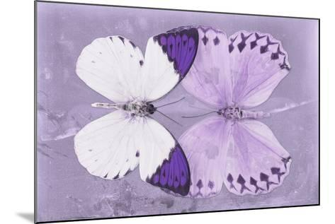 Miss Butterfly Duo Formoia - Mauve-Philippe Hugonnard-Mounted Photographic Print