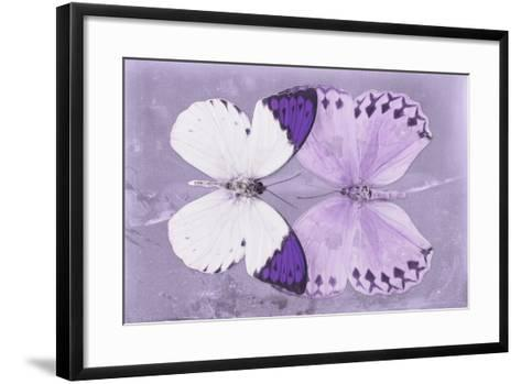 Miss Butterfly Duo Formoia - Mauve-Philippe Hugonnard-Framed Art Print