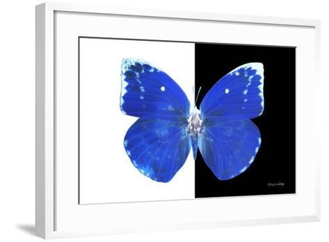 Miss Butterfly Catopsilia - X-Ray B&W Edition-Philippe Hugonnard-Framed Art Print