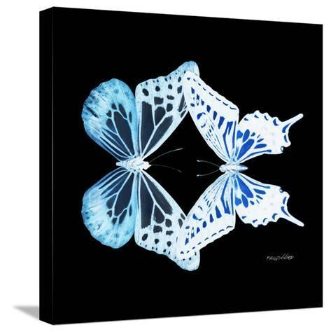 Miss Butterfly Duo Melaxhus Sq - X-Ray Black Edition-Philippe Hugonnard-Stretched Canvas Print