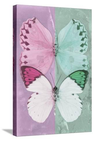 Miss Butterfly Duo Formoia - Pink & Coral Green-Philippe Hugonnard-Stretched Canvas Print