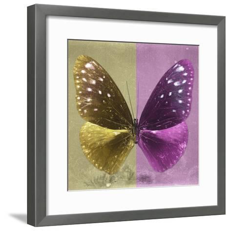 Miss Butterfly Euploea Sq - Gold & Hot Pink-Philippe Hugonnard-Framed Art Print
