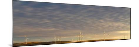 Sunset Light Shining On Wind Turbines Spinning In A Wheat Field-Greg Winston-Mounted Photographic Print