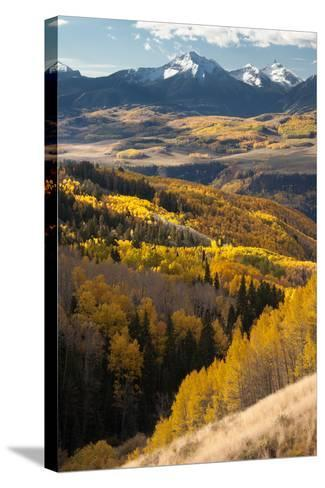 Mount Wilson In The Snow Capped San Juan Mountains Flanked By Fall Colored Aspen Forests-Greg Winston-Stretched Canvas Print