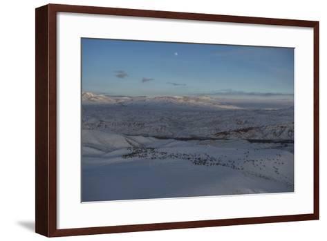Aerial View Of An Elk Herd During Migration In Wyoming-Joe Riis-Framed Art Print
