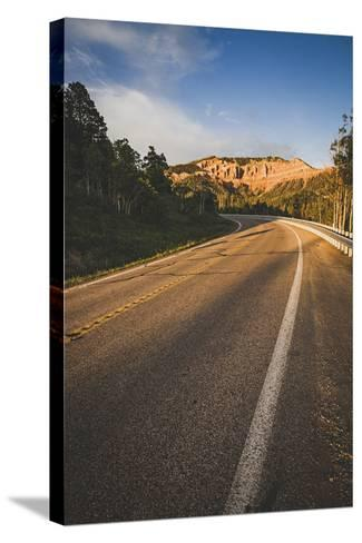 Cedar Canyon, Scenic Byway, State Road 14, Utah-Louis Arevalo-Stretched Canvas Print