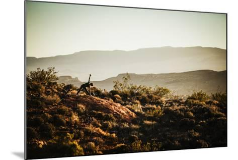 A Woman Practices Yoga In The Red Cliffs Desert Reserve, Saint George, Utah-Louis Arevalo-Mounted Photographic Print