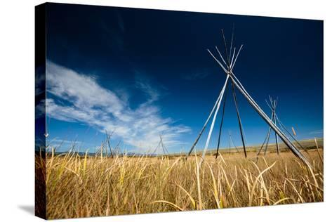 Big Hole National Battlefield, Montana-Ben Herndon-Stretched Canvas Print