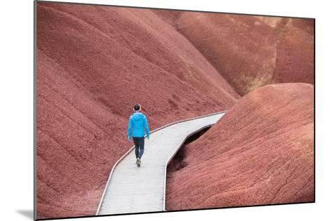 A Female Hiker Takes In The View Of The Beautiful Soil Colors And Textures Along Painted Cove Trail-Ben Herndon-Mounted Photographic Print
